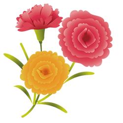 美しい花は幸運が訪れる予兆!?花の夢占い